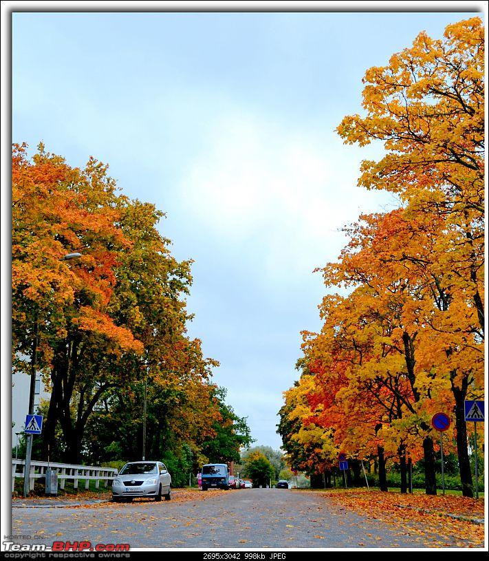 Times of Finland : How I live here-dsc_5497.jpg
