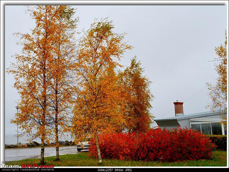 Times of Finland : How I live here-dsc_5546.jpg