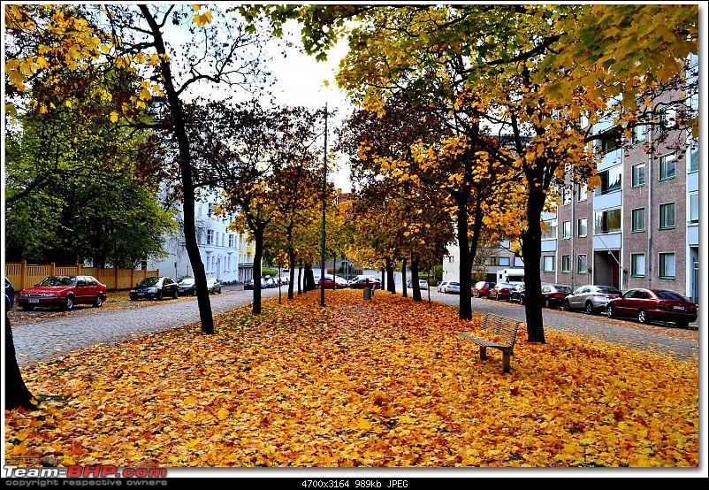 Times of Finland : How I live here-dsc_5578.jpg