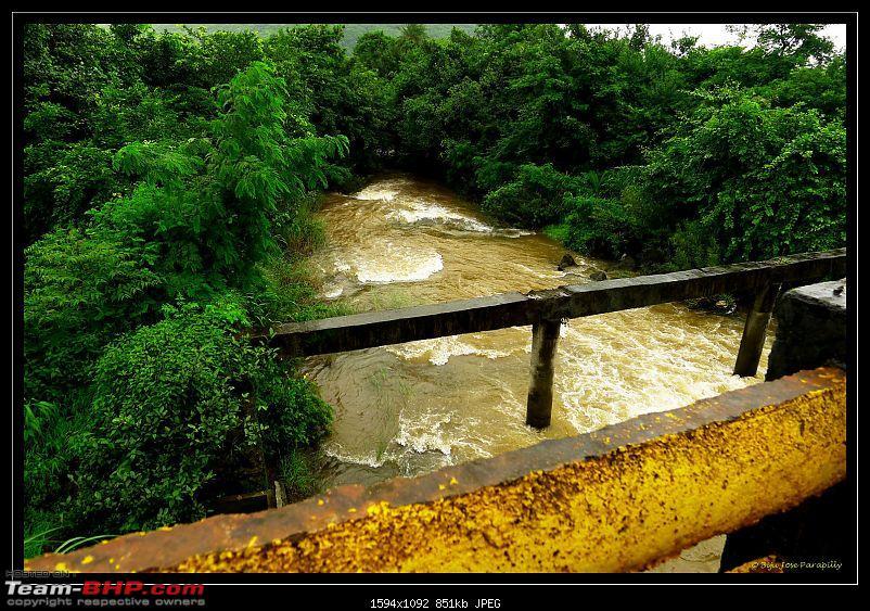 Around Pune: Dancing in the rain, Dancing on the roads & Going Green - Tamhini-p1110989.jpg