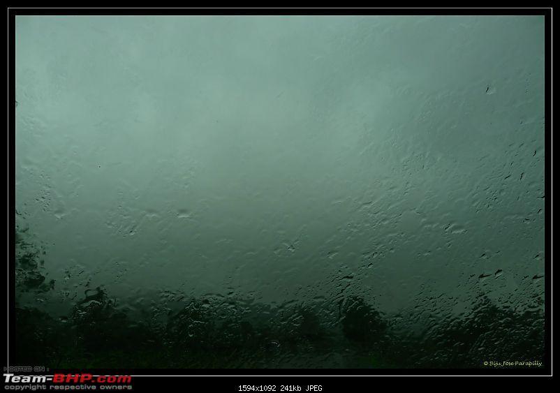 Around Pune: Dancing in the rain, Dancing on the roads & Going Green - Tamhini-p1120031.jpg