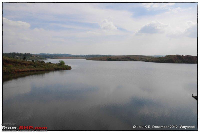 Name:  DSC_9250.jpg Views: 578 Size:  62.3 KB