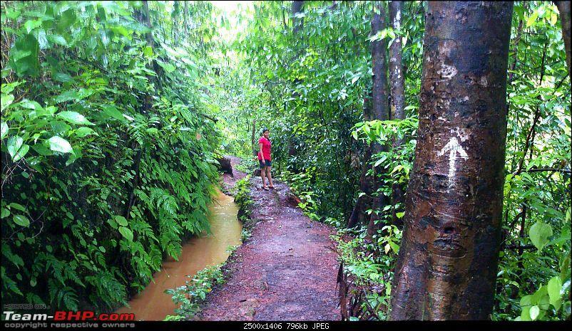 Monsoon Break 2013…Hills, waterfalls and temples (Redux) : Mumbai to Karnataka-sathodi-pathway-4.jpg