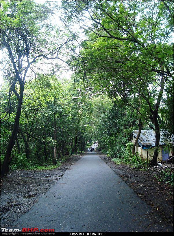 Shilonda Trail (Nature Walk) @ Sanjay Gandhi National Park, Borivali-dsc03961.jpg