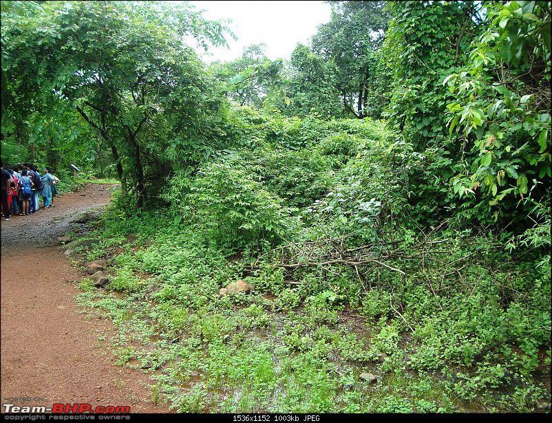 Shilonda Trail (Nature Walk) @ Sanjay Gandhi National Park, Borivali-dsc03971.jpg