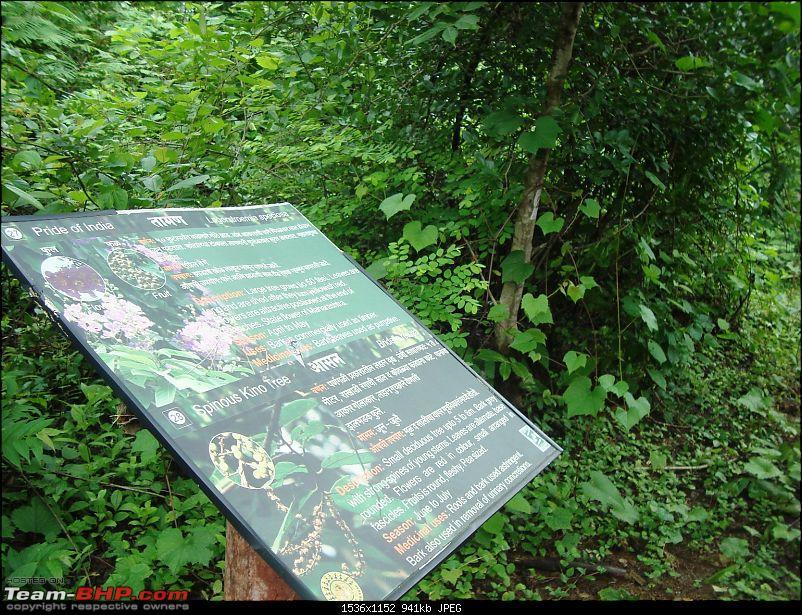 Shilonda Trail (Nature Walk) @ Sanjay Gandhi National Park, Borivali-dsc04026.jpg