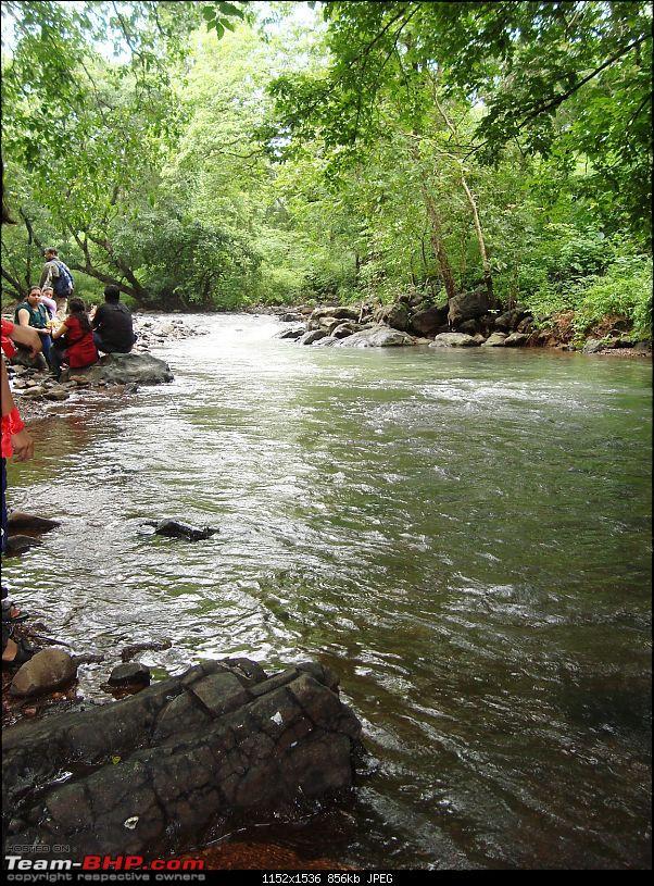 Shilonda Trail (Nature Walk) @ Sanjay Gandhi National Park, Borivali-dsc04036.jpg
