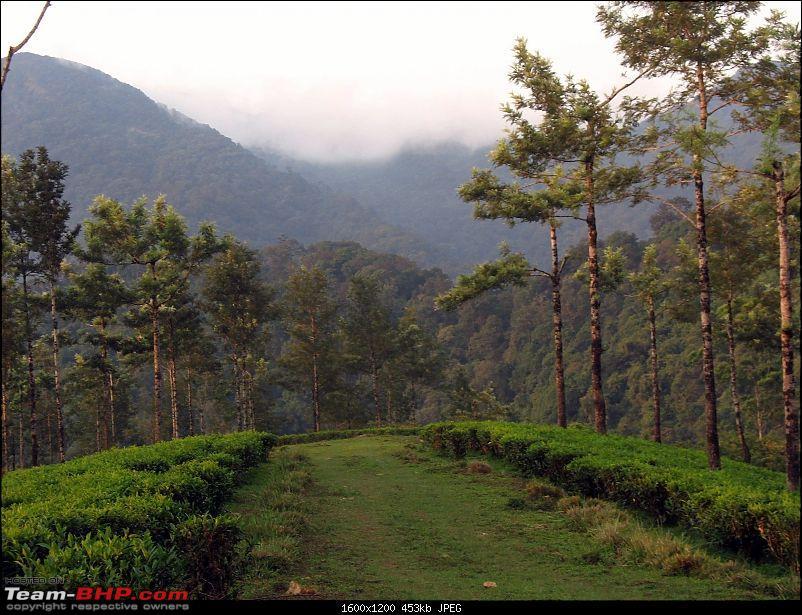 Travelogue: Bangalore -> Valparai-img_0329.jpg