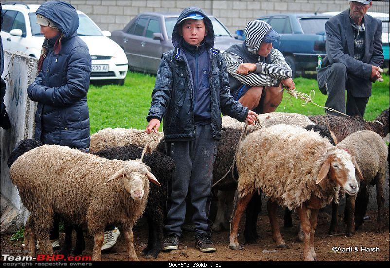 Central Asian Diaries - Kazakhstan & Kyrgyzstan-day10_0012b.jpg