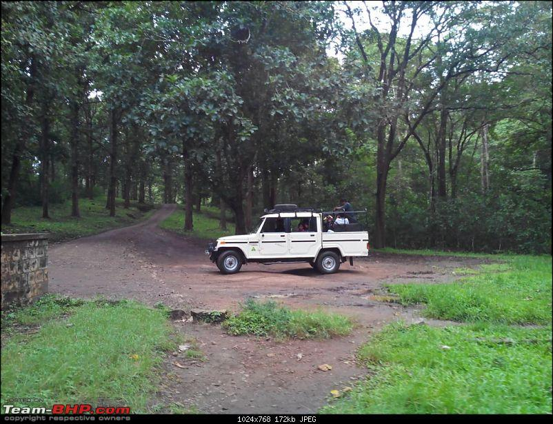 A quick visit to Parambikulam with the Jeeps-8.jpg