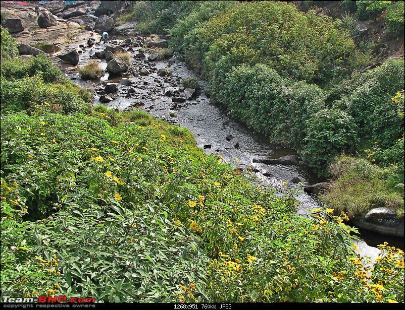 Road Trip : Pollachi - Valparai - Chalakudy-img_6432.jpg