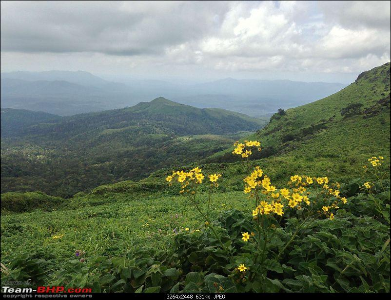 "The Flipped ""C"" of Chikmagalur - Call of the Mountains-250062088.jpg"