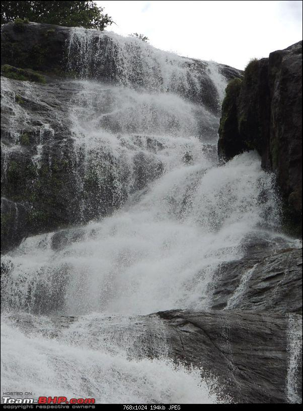 Breathe, you are in God's own country! A visit to Munnar-12cheeyapp-3.jpg