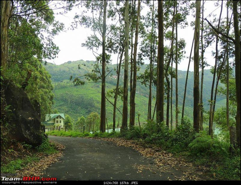 Breathe, you are in God's own country! A visit to Munnar-12-attukad-falls-1.jpg
