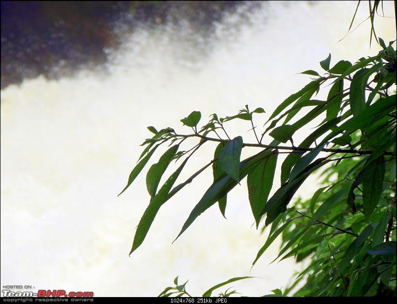 Breathe, you are in God's own country! A visit to Munnar-12-attukad-falls-9.jpg