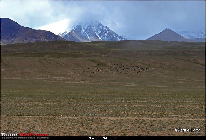 Central Asian Diaries - Kazakhstan & Kyrgyzstan-day12_0011.jpg