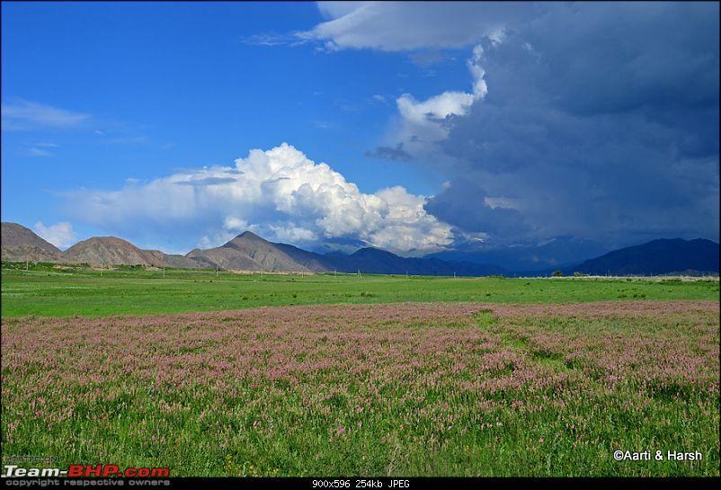 Central Asian Diaries - Kazakhstan & Kyrgyzstan-day12_0053.jpg