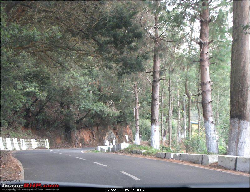 Queen of the hills beckons - Ooty-img_1369.jpg