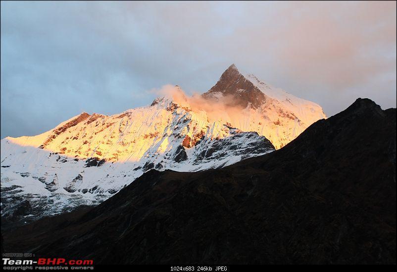 Wandering in the Himalayas : Trek to Annapurna Base Camp-img_3560.jpg