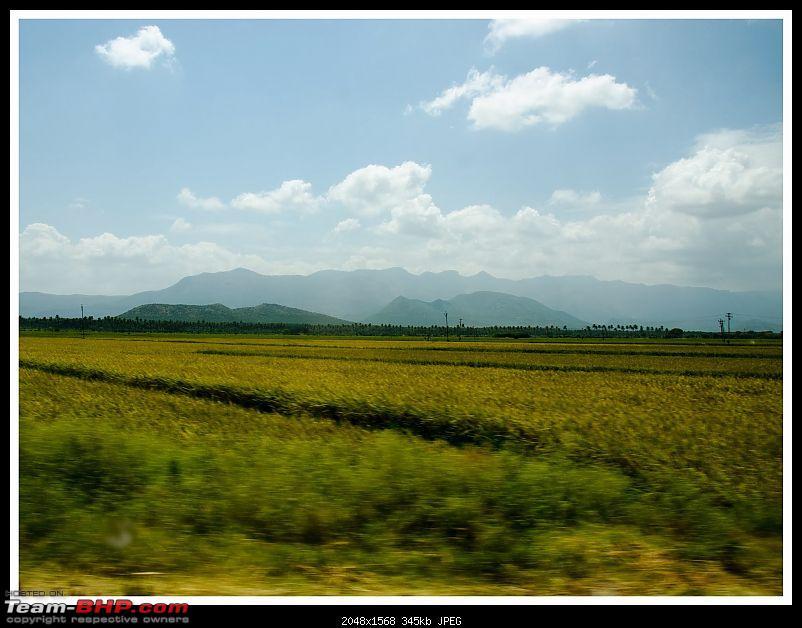 Wanderlust Traveller - Call of the Hills: Munnar, Thekkady & Idukki-suh_9183.jpg