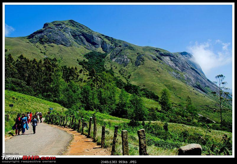 Wanderlust Traveller - Call of the Hills: Munnar, Thekkady &amp; Idukki-suh_9534.jpg <br />