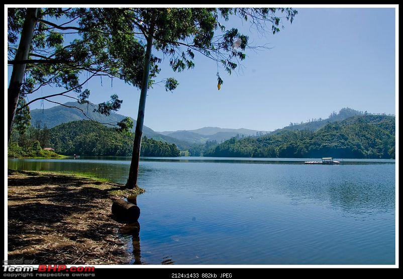 Wanderlust Traveller - Call of the Hills: Munnar, Thekkady &amp; Idukki-suh_9799.jpg <br />
