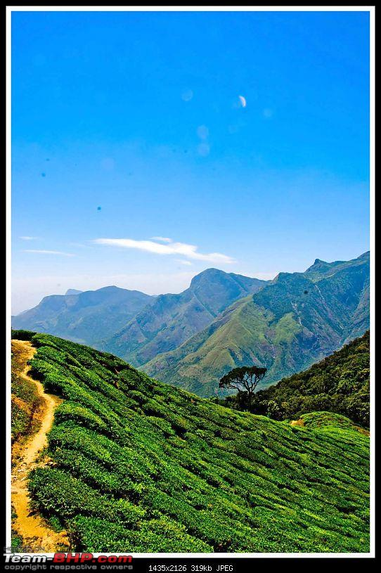 Wanderlust Traveller - Call of the Hills: Munnar, Thekkady &amp; Idukki-suh_9876.jpg <br />