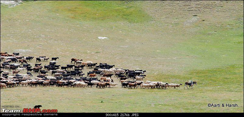 Central Asian Diaries - Kazakhstan & Kyrgyzstan-day14_0057_stitch.jpg