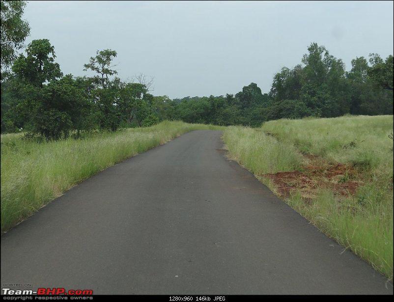 Goa - Where the Greenery meets the Sea-17.jpg