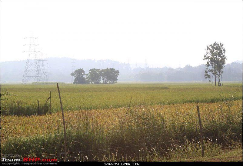 Goa - Where the Greenery meets the Sea-38-2.jpg