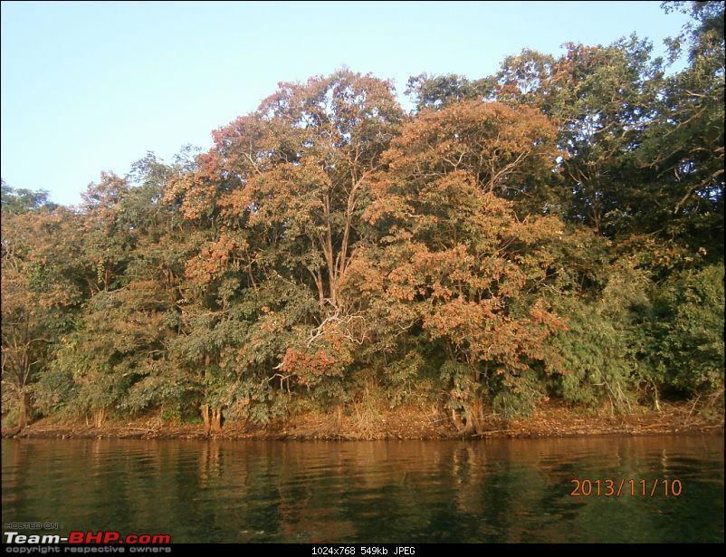 Team-BHP Bangalore meet at Bhadra reserve (09-10 Nov 2013): Call of the wild-bhadra-061-1024x768.jpg