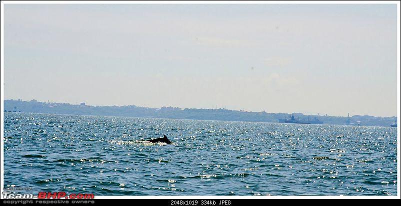 Wanderlust Traveler @ Goa: Beaches, Forts, Churches, Dolphins and a Taxi-suh_0697.jpg