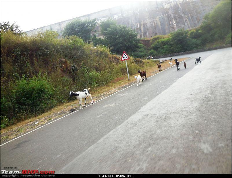 Early Winter & Heading to the hills from Pune!-lavasa-130.jpg
