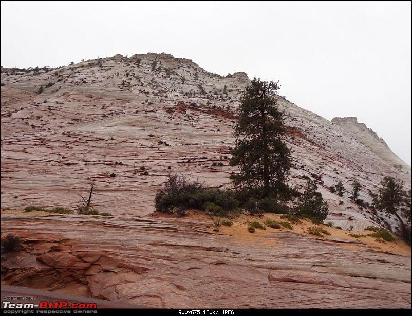 Photologue - To the Red Planet on Earth (Utah & Arizona)-dsc_1034.jpg