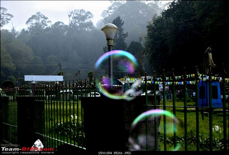 Kodaikanal, December 2013: A Trip to see the Clouds at arm's length-_dsc8387.jpg
