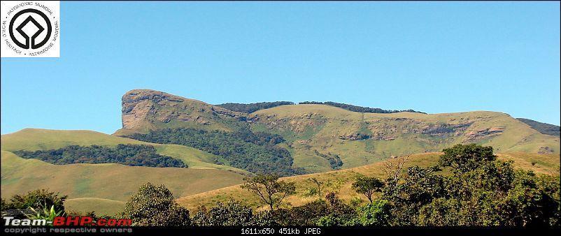 Horse-Face: The Jewel of Western Ghats-dsc08042.jpg