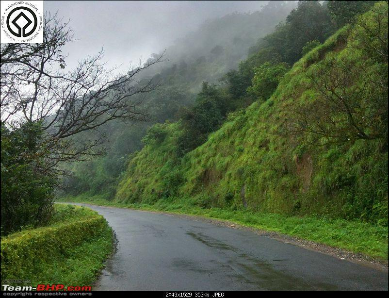 Horse-Face: The Jewel of Western Ghats-img_0146.jpg