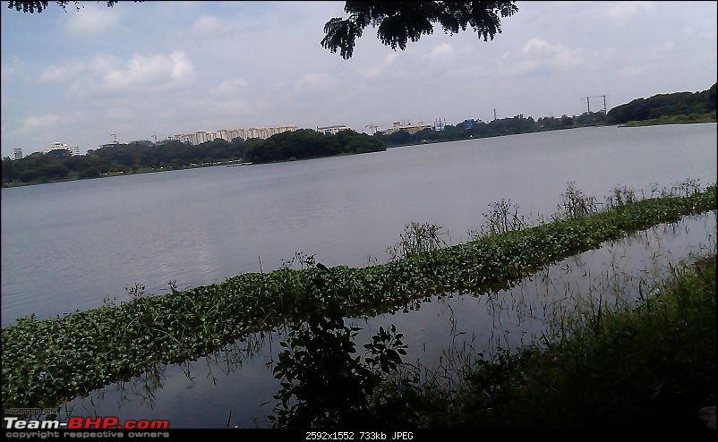 Photologue: The Lakes of Bangalore-imag0312.jpg