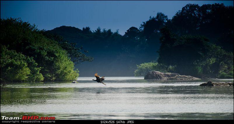 Wanderlust Traveler: Ranganathittu, Srirangapatna & Kokkare Bellur-suh_1037.jpg