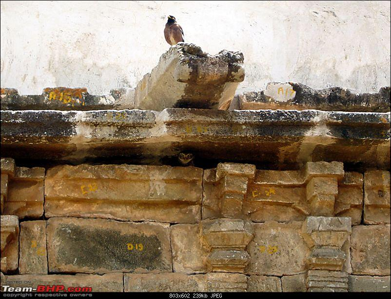 'Xing'ing around ! - An incomplete guide to Hoysala temples ;-)-79.jpg