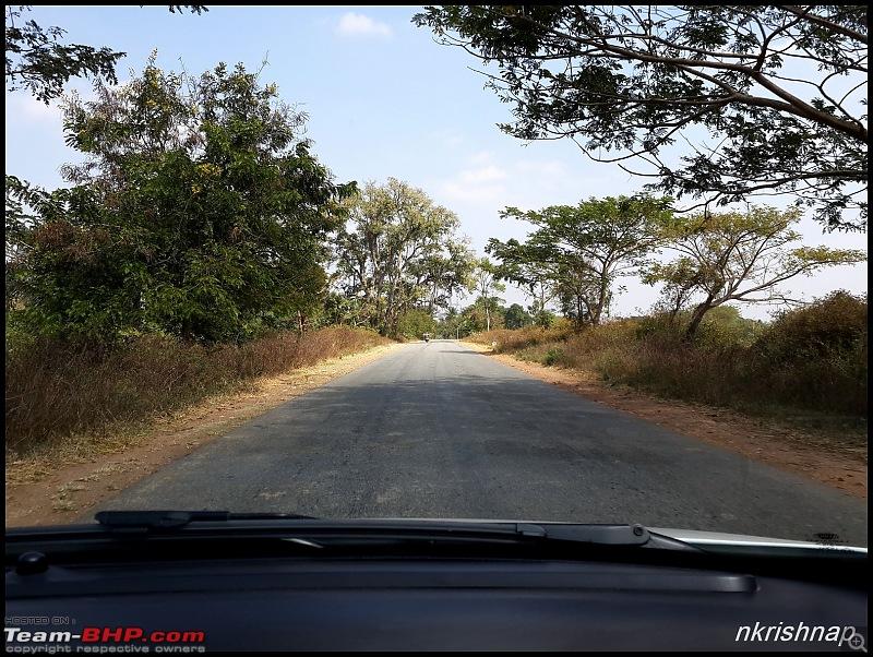 A Retreat to Wilderness: Wayanad-mobile-14.jpg