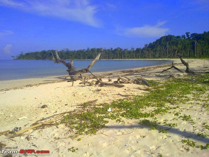 Name:  campbell bay 1.jpg
