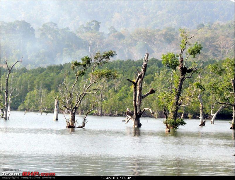Andamans: Pristine Nature in all its glory-11.jpg