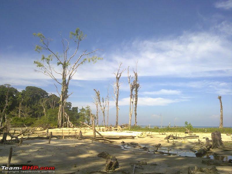 Name:  campbell bay.jpg Views: 9579 Size:  70.5 KB