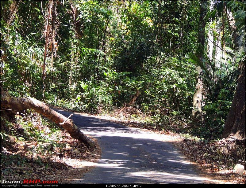 Andamans: Pristine Nature in all its glory-3.jpg