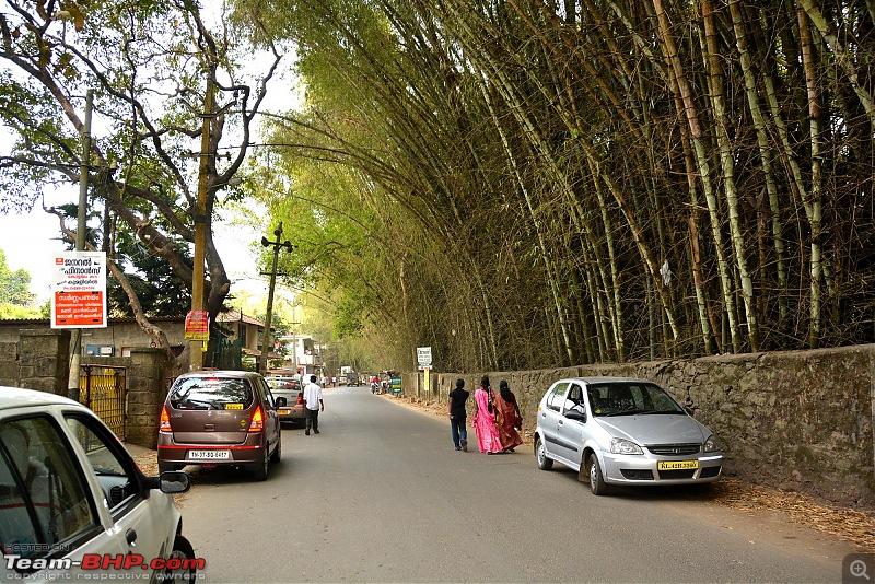 For a Drive across the Hills : Chennai, Thekkady, Munnar & Chinnar-113.jpg