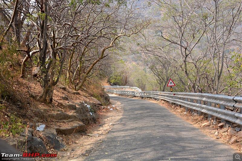 For a Drive across the Hills : Chennai, Thekkady, Munnar & Chinnar-x1.jpg