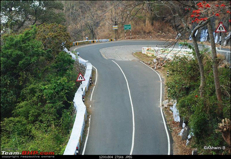A Day in the Clouds - Weekend @ Yercaud-14.jpg