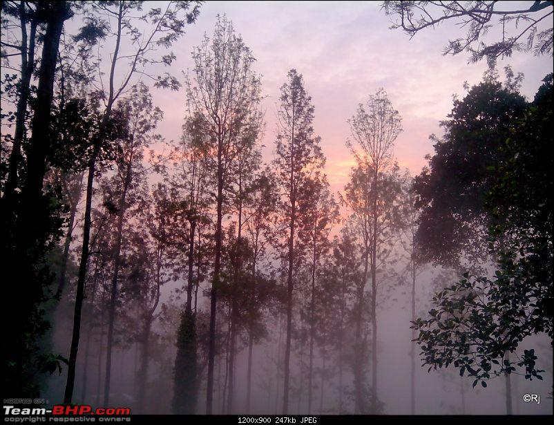 A Day in the Clouds - Weekend @ Yercaud-b4.jpg