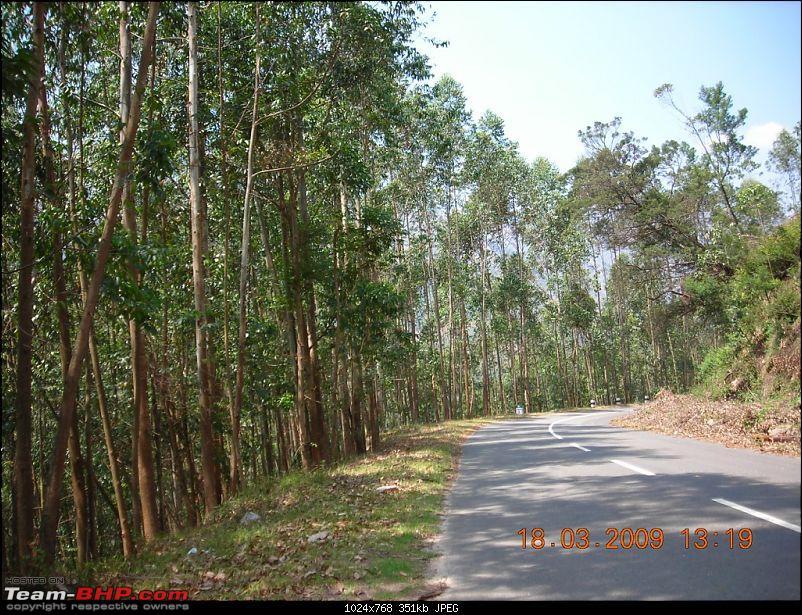 Palio: Pune-Mysore-Kodaikanal-Munnar-Banglore-Pune-munnarroad1.jpg